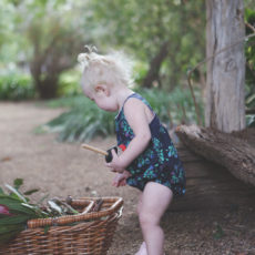 The Charlie Romper – Lilly Pilly